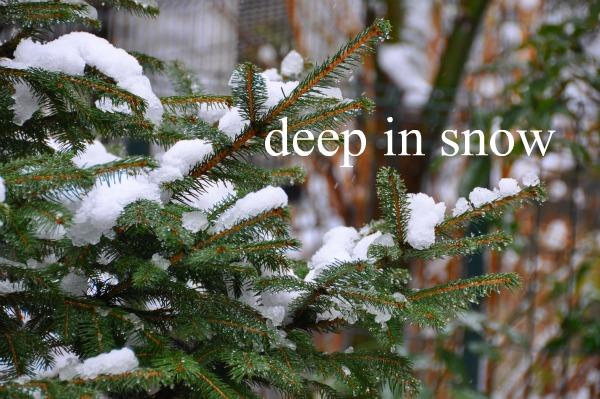 スノーブーツエレノアは雪遊びもできた、大雪寒いね=3