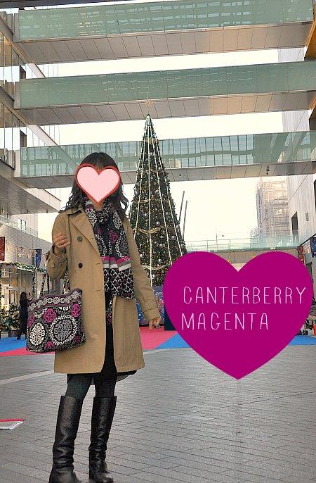 CANTERBERRY MAGENTA110156