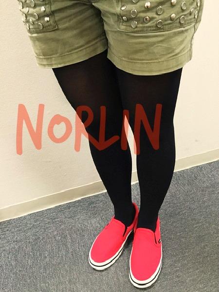 1norlin_fit1