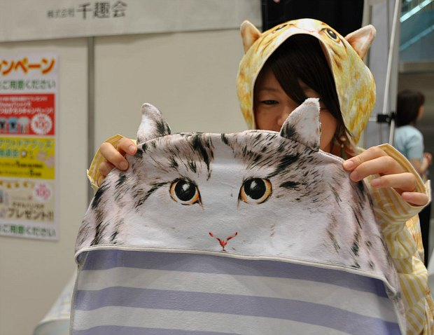 cat towel  0052