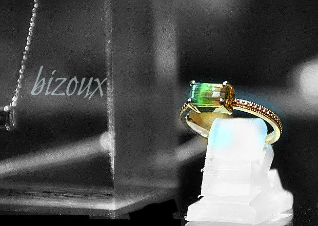 bizoux1107