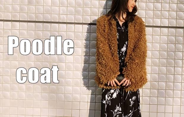 poodlecoat11top-1