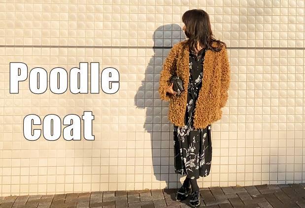 poodlecoat570133